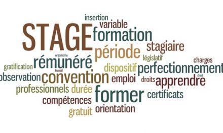 Evaluation de l'impact des dispositifs de formation Réussir et CAQ de la Région Normandie sur les parcours d'insertion des bénéficiaires : éléments de synthèse
