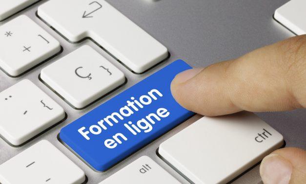 Professionnalisation : des actions en ligne pour les professionnels normands
