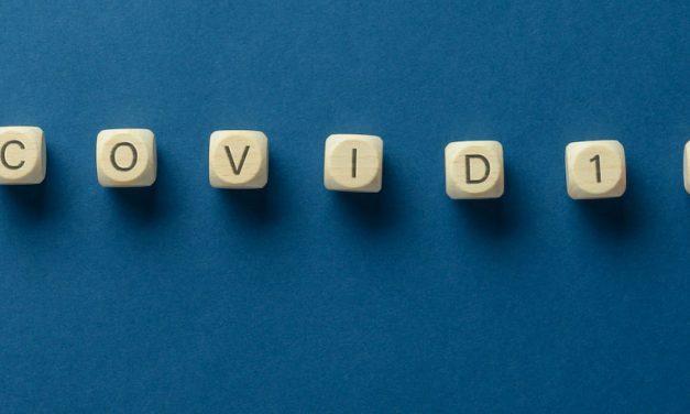 Covid-19 et formation-emploi : l'actualité au fil de l'eau