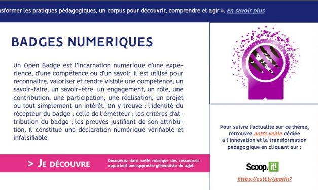 Transformer les pratiques pédagogiques en Normandie : une veille pour découvrir, comprendre et agir… « Les badges numériques »