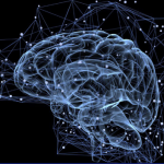 Transformer les pratiques pédagogiques : notre fiche « Neurosciences et apprentissage »